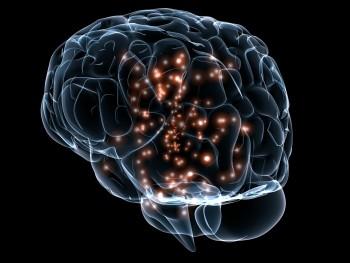 Peak Brain